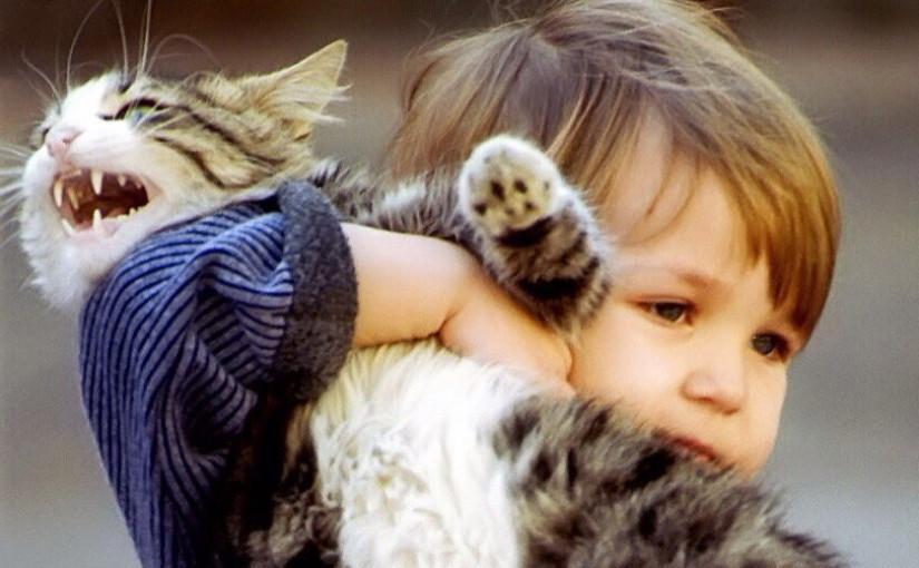 Как отучить ребенка мучить кота?