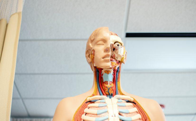 Страшилки из медицинского изолятора